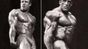 10 esecijalnih elemenata izgradnje mišića