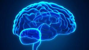 Kako poboljšati rad mozga
