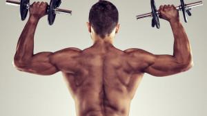 V-oblik tijela i vježbe: Grupe mišića na čiji razvoj se posebno treba fokusirati