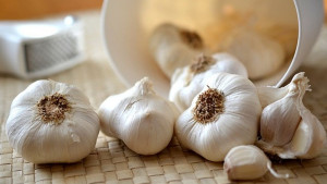 Bijeli luk ima snažan uticaj na probavu kao i probiotici