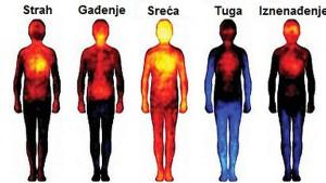 Lociranje emocija u našem tijelu: Evo gdje ih tačno možemo osjetiti