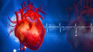 Savjeti i navike za zdravo srce