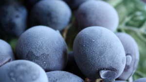 Smrznuto grožđe: odlična ljetna poslastica
