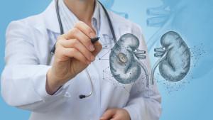 Zdravlje bubrega: 9 upozoravajućih znakova da nešto nije uredu