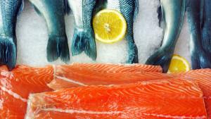 Da li je riba meso?