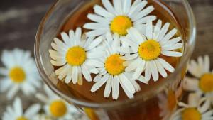 7 prirodnih lijekova protiv proljetnih alergija