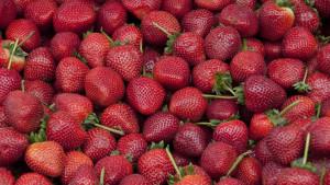 Najbolje voće za mršanje