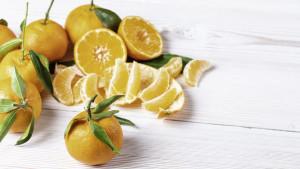 Mali svijet zdravlja u kori od naranče