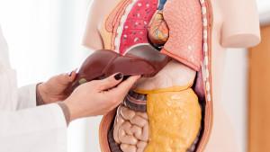 Svakodnevne navike koje potajno uništavaju vašu jetru
