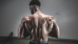 Mišići i šest istinskih zakona njihove izgradnje