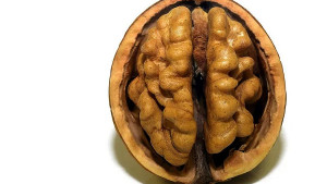 Ojačajte mozak i povećajte energiju uz ove namirnice