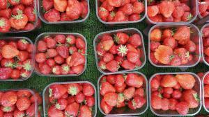 Mali trik koji će jagode učiniti svježima jako dugo