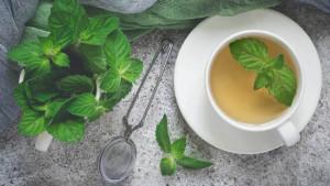 Od kvalitetnijeg sna do mršanja: Zdravstvene prednosti čaja od mente