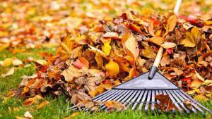 Zdrave jesenje aktivnosti u kojima možete uživati