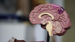 Prirodni načini da poboljšate pamćenje