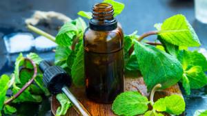 Zdrava koža, kosa, smanjenje opekotina od sunca: Zašto je ulje od mente korisno za nas?