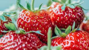Kako jagode mogu zaštiti mozak, srce i imunitet?