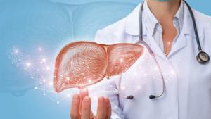 Kako znati da je vaša jetra zdrava?