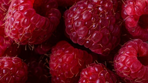 Korisna svojstva malina za zdravlje