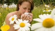 Prirodni lijekovi protiv alergije na polen