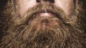 Da li je brada nezdrava?