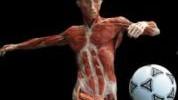 Kako izbjeći mišićni debalans u svom sportu