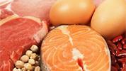 Hrana bogata visoko kvalitetnim proteinima