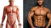 Kako potrošiti i do 4000 kalorija dnevno?