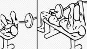 Koja vježba je najbolja za svaku mišićnu grupu?
