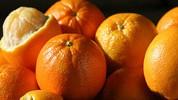 Narandža - zvijezda među voćkama