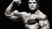 >5 odgovora zašto ne možete razviti velike bicepse