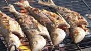 Kako pripremiti ribu na roštilju?