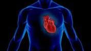 Činjenice o srcu koje niste znali