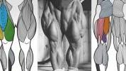 Tom Platz savjetuje: 4 najbolje vježbe za noge