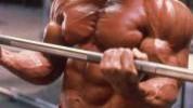 Top 5 najboljih bodybuilding suplemenata
