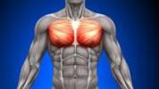 3 najčešće greške kod treninga prsa