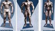 Koji tip tijela je vaš i kako bi trebali trenirati