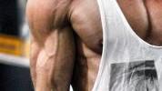 Vaskularnost i indeks tjelesne masti