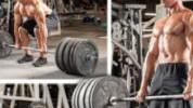 >Osnovne vježbe za povećanje mišićne mase