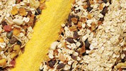 Važnost vlakana u ishrani
