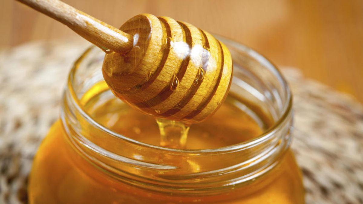 Sve prednosti meda