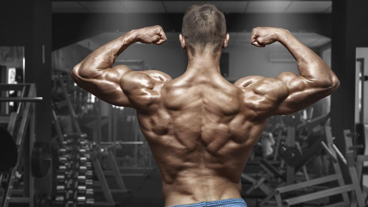 Superset za leđa: Ubrzani put do širine i dubine leđa