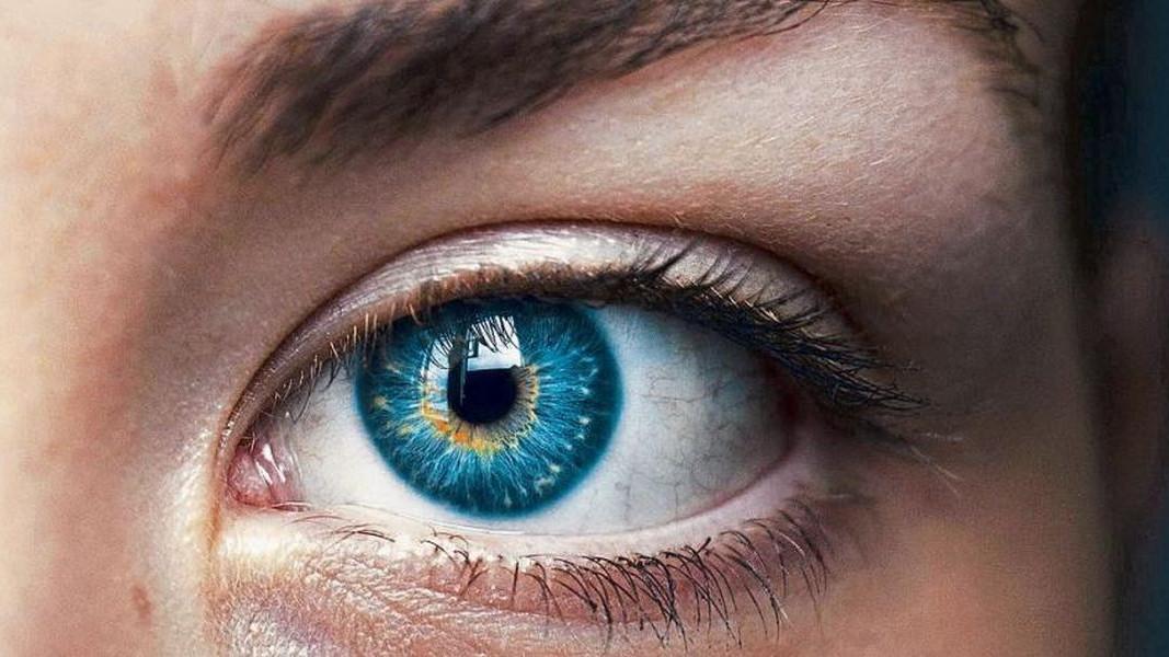 Namirnice koje poboljšavaju očno zdravlje