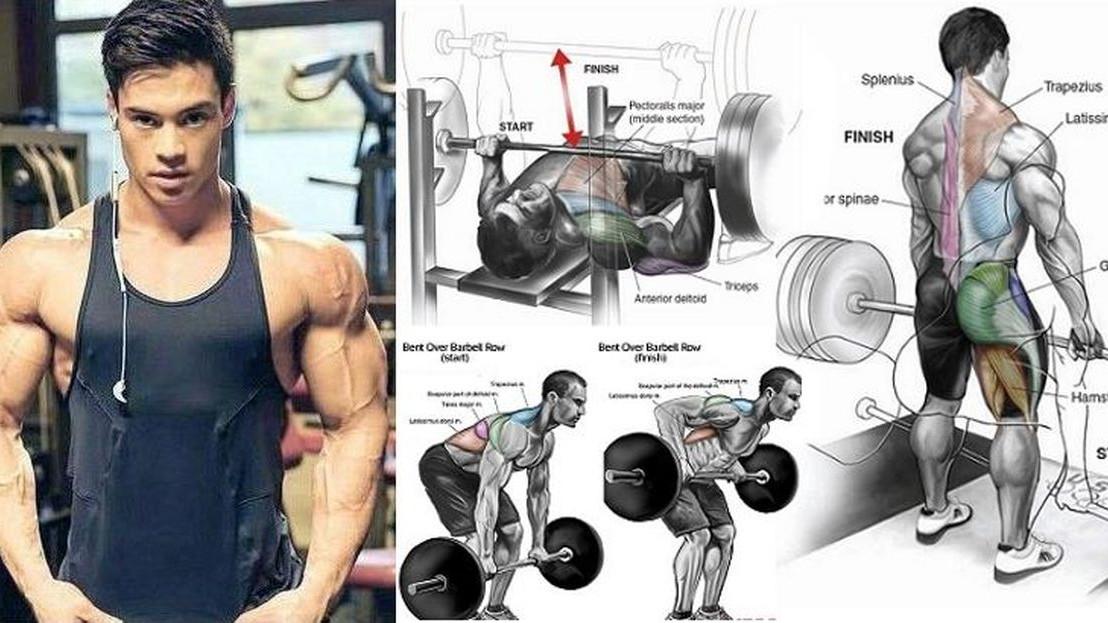 Sedam vrhunskih vježbi koje maksimiziraju snagu i veličinu mišića