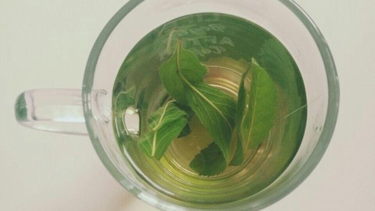 Zašto trebate početi piti zeleni čaj?