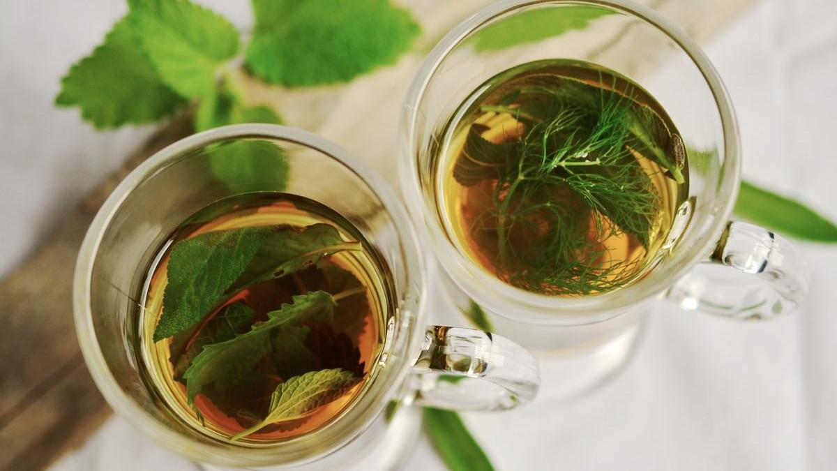 Umirujuće prednosti čaja od mente
