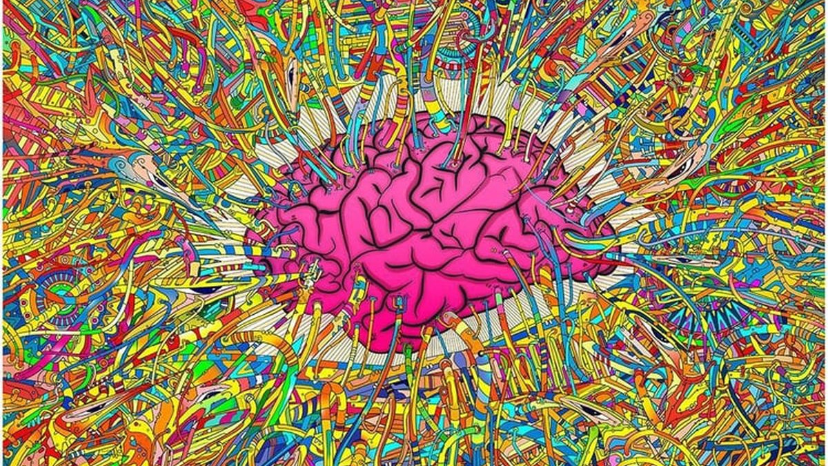 Kako da vaš mozak bolje funkcioniše?