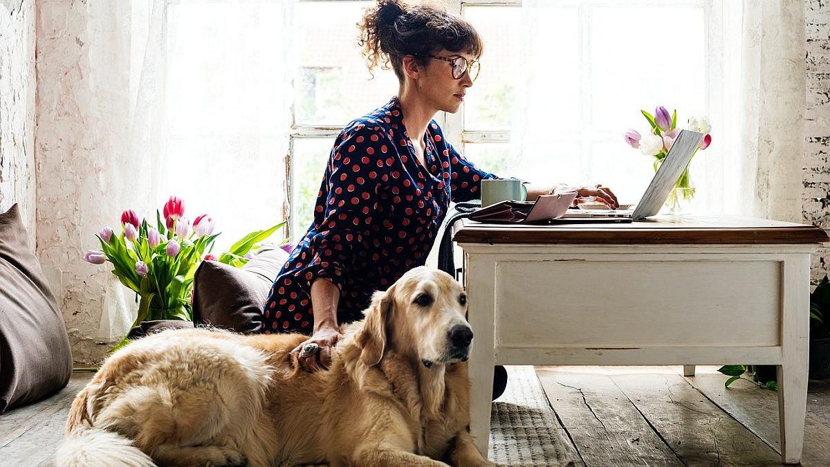 Kako posjedovanje psa ili mačke može poboljšati zdravlje?