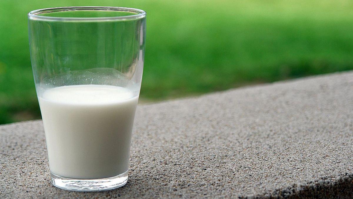 Zdravstvene koristi mlijeka za vas