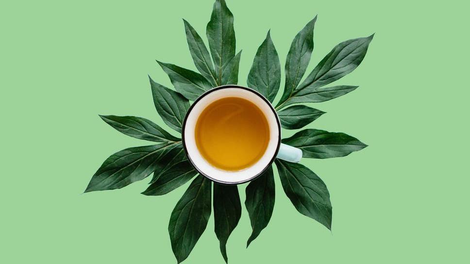 Istraživanja pokazala: Čaj vam može pomoći da živite duže